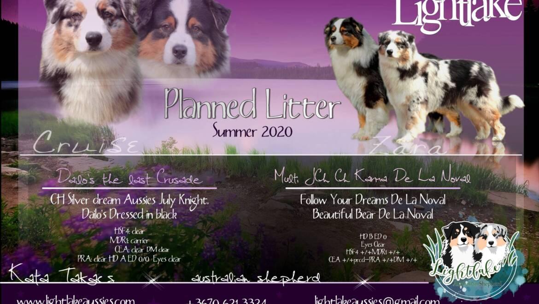 Planned litter